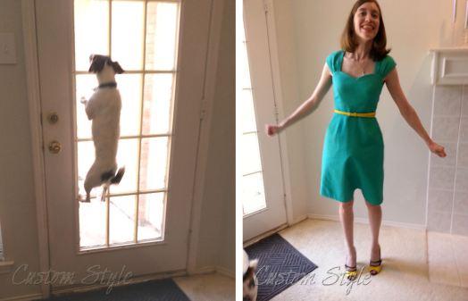 Wensley-Jumping-at-Back-Door